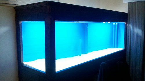 350 plywood aquarium build reef central online community for Plywood fish tank