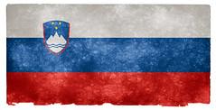 Slovenia Grunge Flag