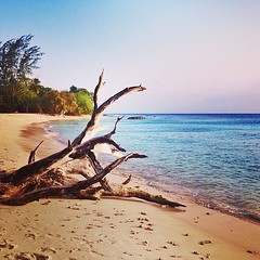 #beach #barbados #sunset #caribbean #paradise #tropical #sea #bim