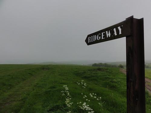 Ridgeway is this Way