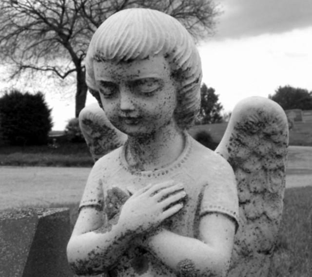 220/365 Little Angel