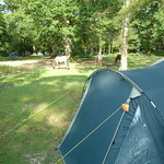 New Forest, England June 2014