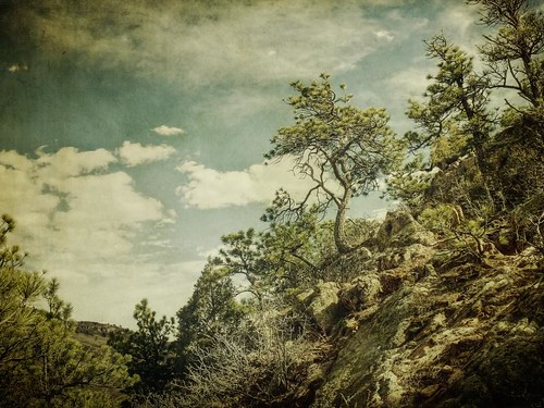 trees light sky pine clouds canon vintage landscape colorado afternoon boulders aged openspace textured hogback kencaryl t1i applesandsisters
