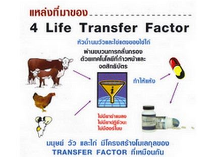 Transfer.factor.4life.research