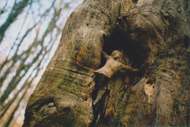 """Tree of Hanged Men"""