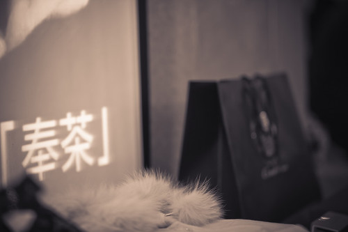 Blog-0135
