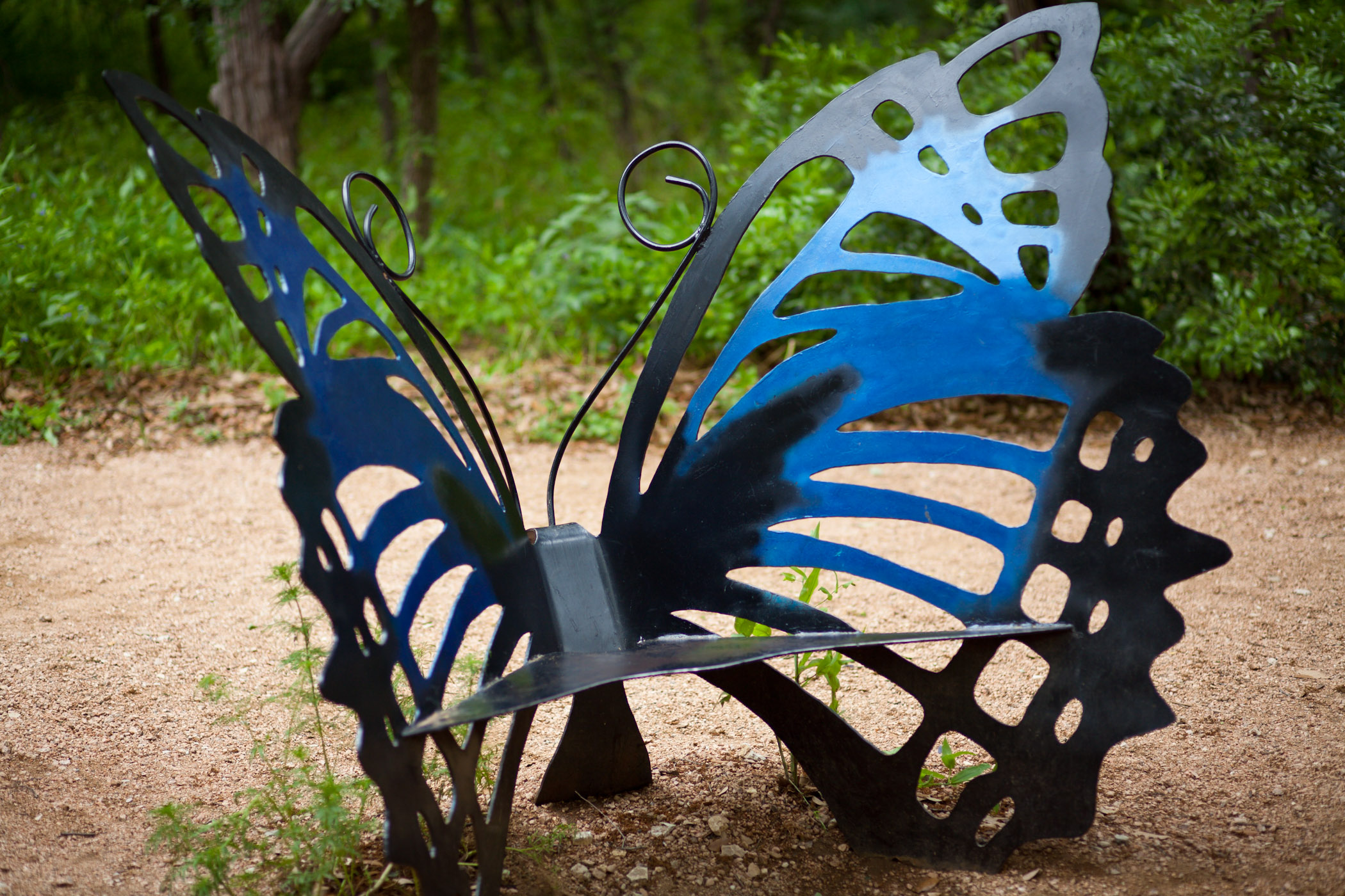 Butterfly Bench Flickr Photo Sharing