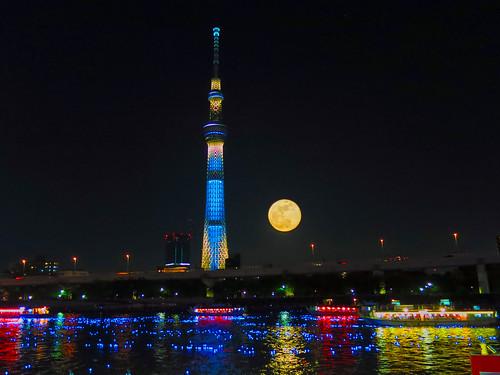 Tokyo Hotaru 2012 Light Fantasy
