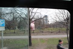 Un cochon géant dans la rue !