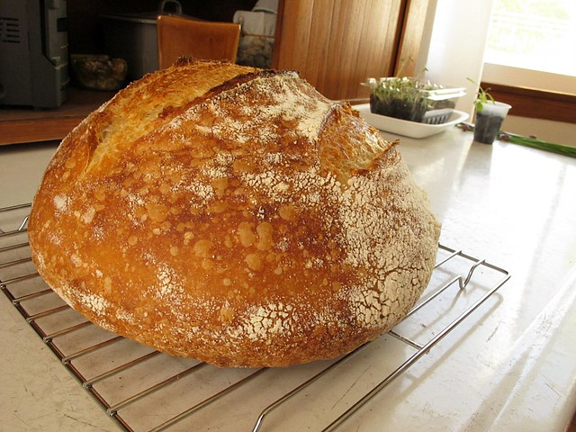 sourdough (<span class=