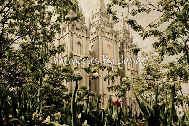 IMG_0151-vintage.jpg