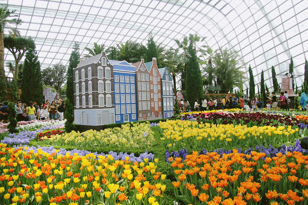 Garden By The Bay Flower Festival gardensthe bay: tulipmania | the cambelles | a singapore