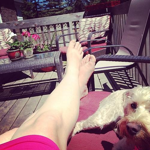 Basking in the Sun--Finally!