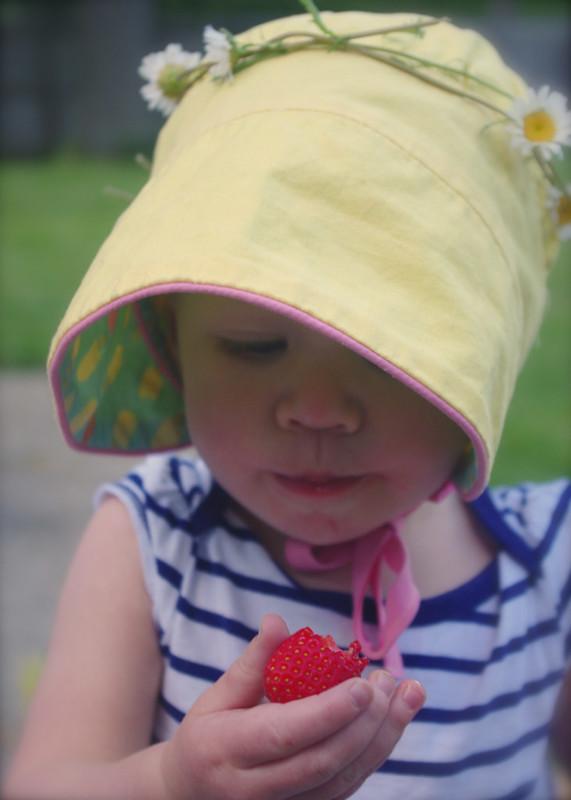 Strawberries & Daisy Chains