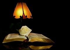 Mi guia en la oscuridad (La Biblia)