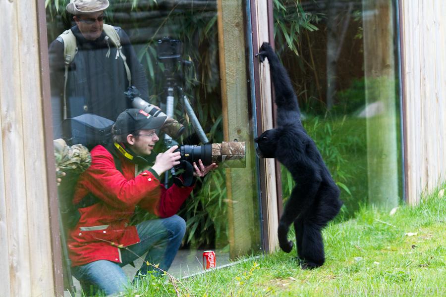Sortie au Zoo D'amnéville le 05 Mai 2012 : Les photos 7148976391_b393b601d6_o