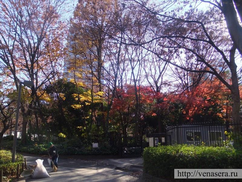 Парк возле токийской мэрии