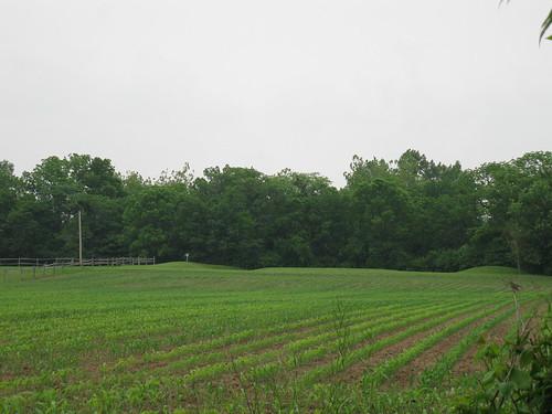 ohio farms museums johnjohnston ohiohistoricalsociety piquaohio miamicountyohio piquahistoricalarea