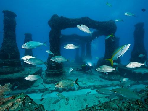 neptune-memorial-reef-cemetery_37921_990x742