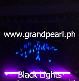 BlackLightMime.www.grandpea