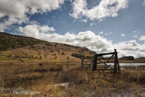 Blea Tarn by Dave Brightwell