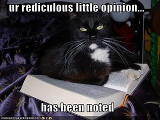 lol cat-has-noted-your-rediculous-opinion