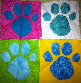 Paws for Payden