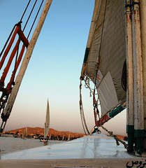 Feluccas - the traditional sailboats on Egypt's Nile river by Richa500