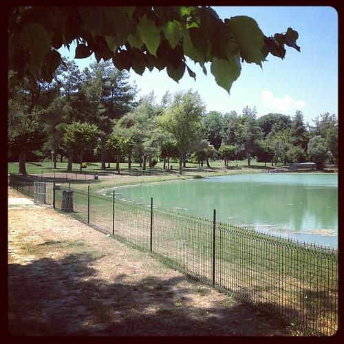 Pausa relax al lago verde