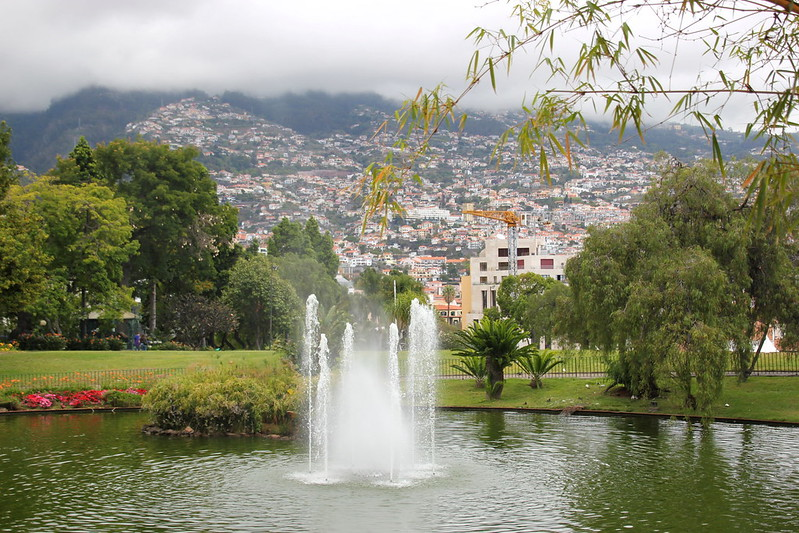Madeira, Funchal 2014 + ostokset 1236