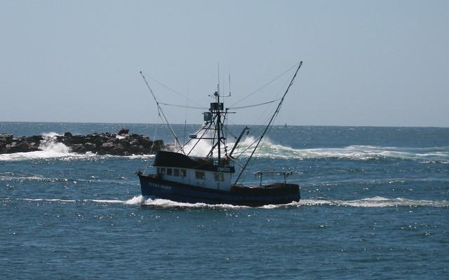 Petra marie entering tillamook bay flickr photo sharing for Tillamook bay fishing