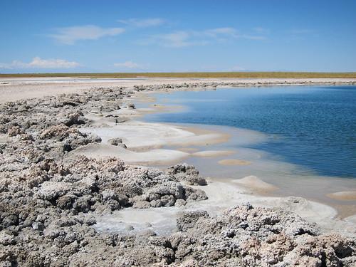 salty shoreline