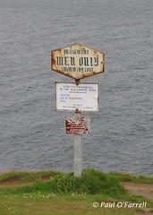 Guillamene Cove, Tramore May 2006