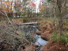 Walnut Creek Lake Raleigh NC 0482