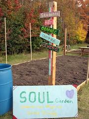 Soul Garden Walnut Creek Lake Raleigh NC 0508