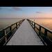 Pier by Oliver DeClap