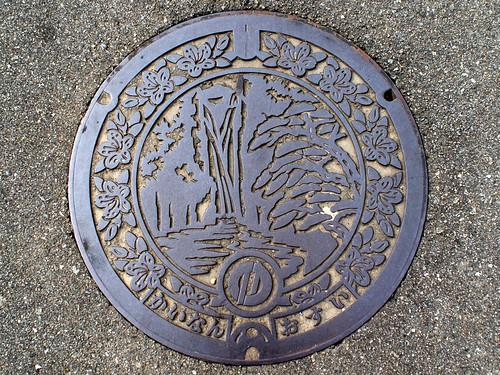 Kainan Tokushima manhole cover(徳島県海南町のマンホール)