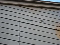 floor(0.0), outdoor structure(0.0), garage door(0.0), wood stain(0.0), metal(0.0), window covering(0.0), interior design(0.0), door(0.0), facade(0.0), daylighting(1.0), wall(1.0), wood(1.0), roof(1.0), molding(1.0), line(1.0), siding(1.0),