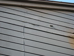daylighting, wall, wood, roof, molding, line, siding,