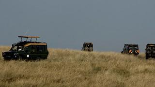 Day 76 - Maasai Mara-17981