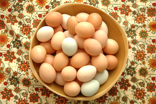 how to store fresh eggs.
