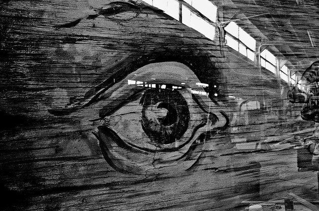 Eye on the Warehouse