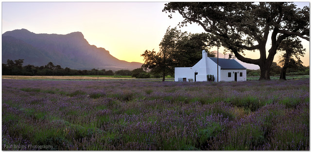 Lavender Cottage Sunset
