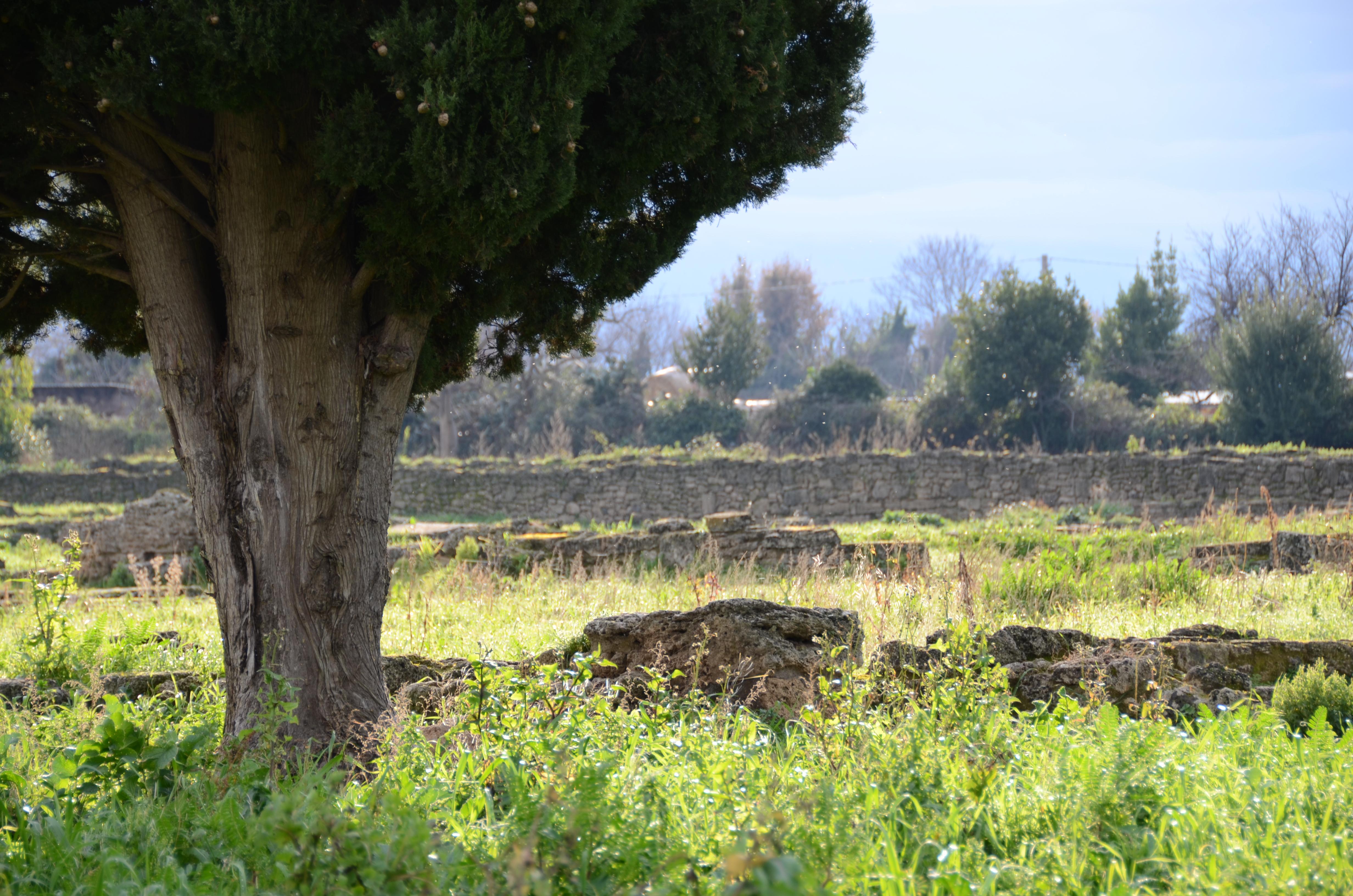ina assitalia salerno italy - photo#26