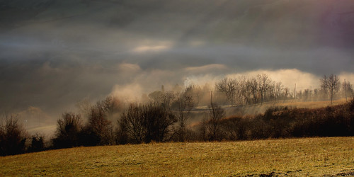 colore nebbia mattino casalbono