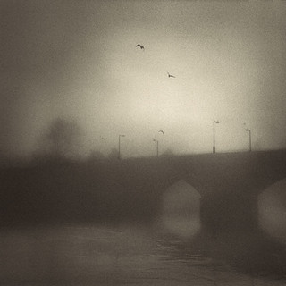Bridge and birds in fog, Stirling.