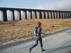 Ribblehead Viaduct Image