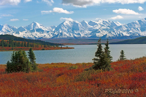 Denali National Park (Alaska) by pkefali - Still on the mend!