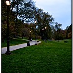 Twilight in Prospect Park