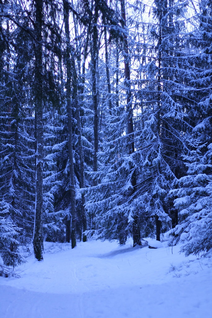 Kaitaa - Espoo, Finland - Tripcarta